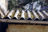 Alte Asbestzement-Wellplattendeckung